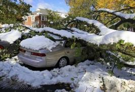 October 2011 Snow Storm Trees Fall on Cars