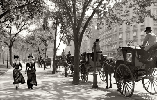 Taxi Cabs on Madison Avenue, 1900