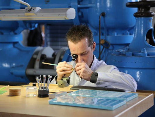 Watchmaker at Work During GTE