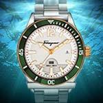 Diver Watch